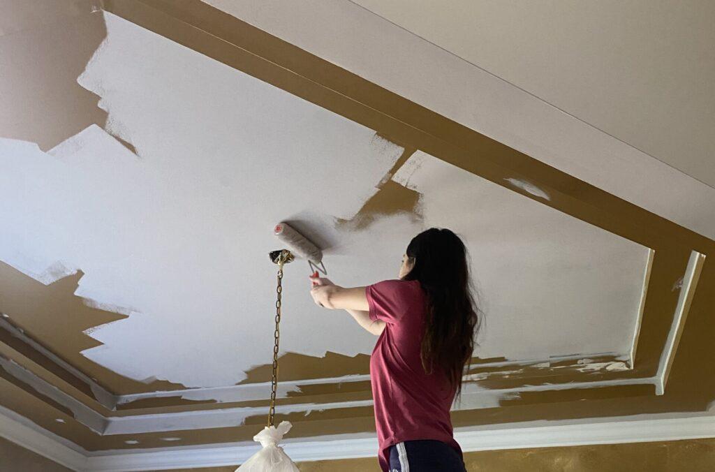 Paint color, Alpaca, ceiling paint, one room challenge